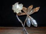 Stříbrná sněhová růže