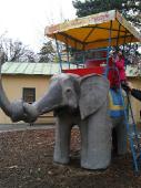 Slonní atrakce