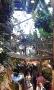 Tropický dům